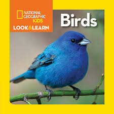 national geographic kids look and learn board books