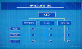 Org Chart Software For Large Companies 4 Types Of Organizational Structures Point Park Online