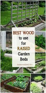 best wood for raised garden beds. Tips For Choosing The Best Wood Raised Garden Beds G