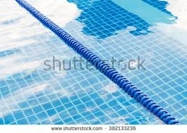 blue color plastic swimming pool lane rope floating on water surface 382133236