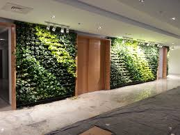Small Picture Vertical Gardens India