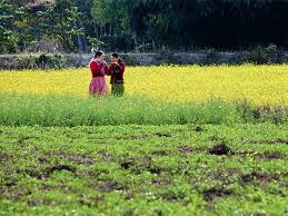 Assamese Flower Chart Garamur In Assam Visit The Largest River Island Of India