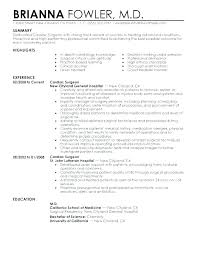 Resume Summary Examples For Students Good Resume Summary Examples