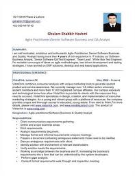 Business Analyst Resumes Samples Business Analyst Resume Examples