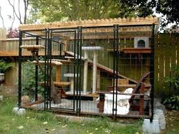 outdoor cat playground outdoor cat playhouse they found the perfect way to let their indoor cats outdoor cat playground