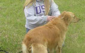 Dog park opens | Jamestown Sun