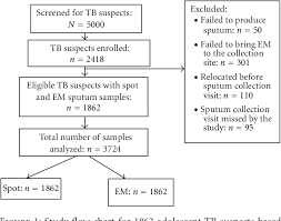 Pathophysiology Of Pulmonary Tuberculosis In Flow Chart Figure 1 From An Early Morning Sputum Sample Is Necessary