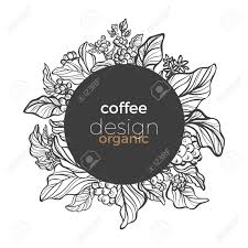 Here you can explore hq coffee tree transparent illustrations, icons and clipart with filter setting like size, type, color etc. Vector Graphic Coffee Tree Branch Leaf Bean Vintage Hand Drawn Royalty Free Cliparts Vectors And Stock Illustration Image 105588900