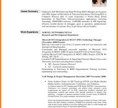 Resume Professional Summary Examples Impressive Pleasing Professional Summary Resume Template Also Executive