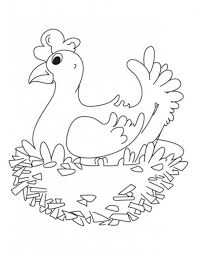 Small Picture Hen Farm Animals Coloring Pages Animal Coloring pages of