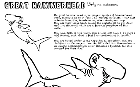 In addition, the kid is carried away and does not bother his mother while she does her business. Shark Education Coloring Sheets