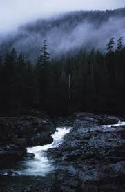 what is the setting of the short story the interlopers by saki a dark forest establishes mood