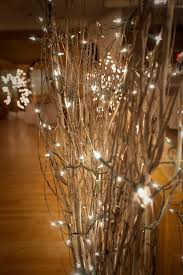 sparkly lights in branches - attach to poles and as centerpieces?