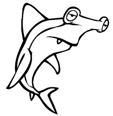 hammerhead shark coloring pages.  Hammerhead Free Hammerhead Shark Coloring Page Throughout Coloring Pages M