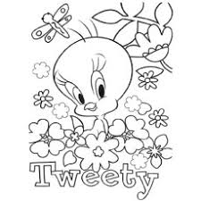 Small Picture Ideas of Coloring Pages Tweety Bird Also Resume Mediafoxstudiocom