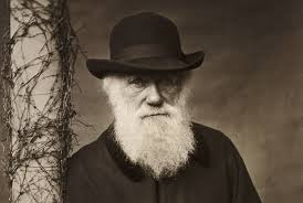 charles darwin author of on the origin of species