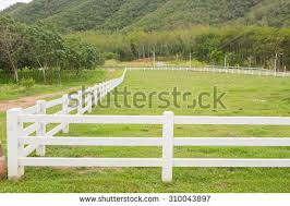 white fence. White Fence Farm Field Stock Photo (Royalty Free) 310043897 - Shutterstock