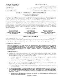 Examples Of Strong Resumes Mesmerizing Resume Examples Of Excellent Resumes Format 48 Ifest