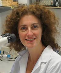 Abigail Tucker: the first to be awarded the BSDB Cheryll Tickle medal -  BSDB - British Society for Developmental Biology