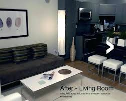 Living Room Decor Ideas For Apartments Custom Guys Apartment Apartment Decorations Single Guy Apartment Ideas