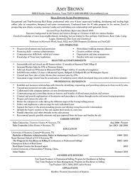 Resume Travel Agent Resume
