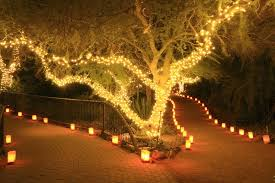 outdoor fairy lighting. Your Guide To Solar Rechargeable Fairy Lights Outdoor Lighting