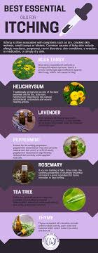 7 Best Essential Oils for Itching | Itchy Feet, Skin, Jock Itch & More
