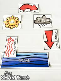 Water Cycle Anchor Chart One Sharp Bunch