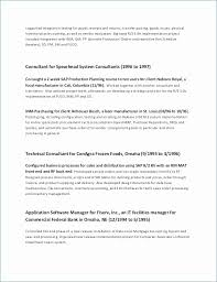 Independent Contractor Resume Sample