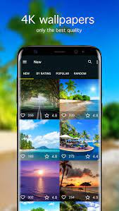 Summer Wallpapers 4K for Android - APK ...