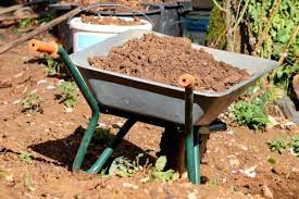 i plant after adding compost