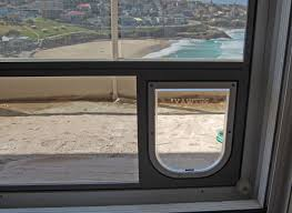 inside view of small doggy door