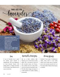 three uses for lavender in your home in my fall naturally e