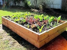 building a garden box. Build Above Ground Vegetable Garden Gardens Kits Inspiration How To A Raised . Building Box