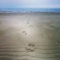 Skaket Beach 25 Tips