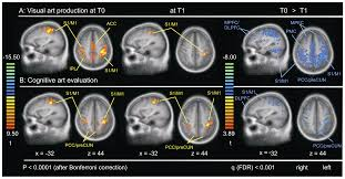 how art changes your brain differential effects of visual art  png