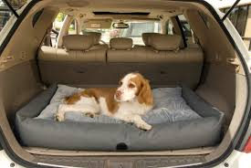Good Quality of the Cheap Dog Car Bed