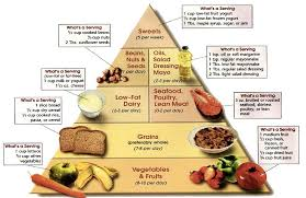 Healthy Diet Chart For Women Fundamentals Of Healthy Eat Popular Diet Plans For Healthy