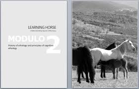 Learning Horse | Learning Animals