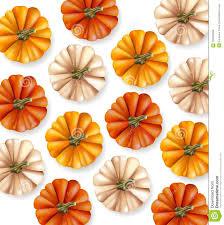 Autumn Pumpkins Pattern Vector Realistic Layout Texture