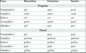 Interrogative Adjectives Latin Ii