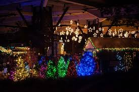 Indianapolis Zoo Lights Christmas Lights At The Indianapolis Zoo Are Bigger Than