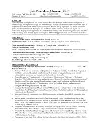 Resume Template 24 Cover Letter For Professional Summary On