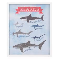 Types Of Sharks Chart Stephania Types Of Sharks Shark Chart Framed Art