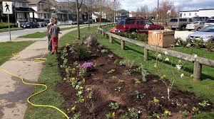 garden grants.  Grants Kids Watering A New Sidewalk Garden In Hillcrest For Garden Grants
