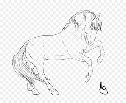 wild horse drawings in pencil. Fine Wild Wild Horse Drawing Line Art Pencil  With Horse Drawings In H