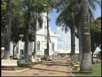 imagem de Ariranha São Paulo n-6