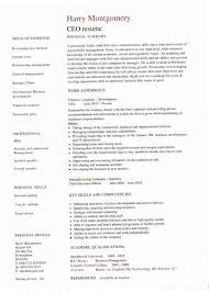 Winning Resume Templates Best Ceo Resume Examples 48Z 48 Award Winning Ceo Resume Templates