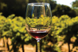 Wine Design Southern Pines Full Day Wine Country Bus Tour From San Francisco
