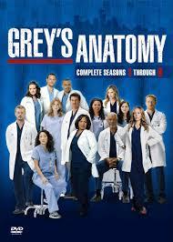 Assistir Greys Anatomy 13ª Temporada Episódio 10 – Dublado Online